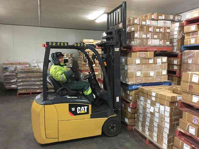 CAT electric forklift for cool room operations